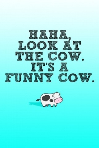 Ha. Look. It's a Funny Cow.