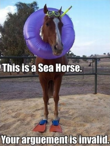 This is a sea horse. Any questions?