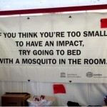 Mosquitos can make an impact, why can't you?