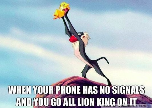 When Your Phone Has No Signal You Go All Lion King On It