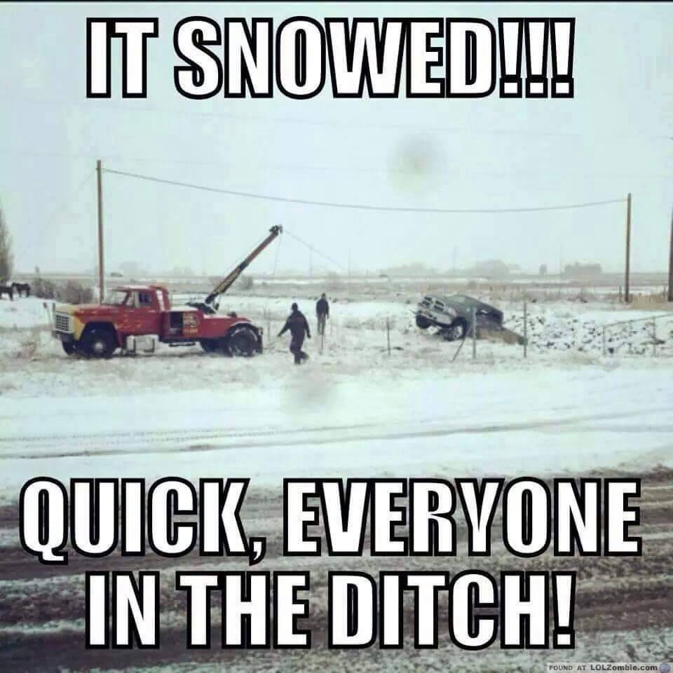 It Snowed!!! Quick, Everyone In The Ditch